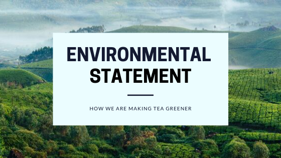 Our Environment statement